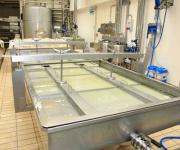 Molkereien/Milchverarbeitung